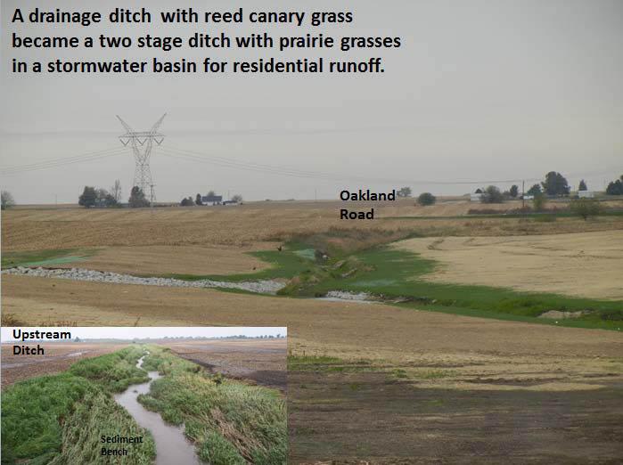 The Grove Phase 3 Restoration-2
